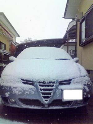 Alfa1561